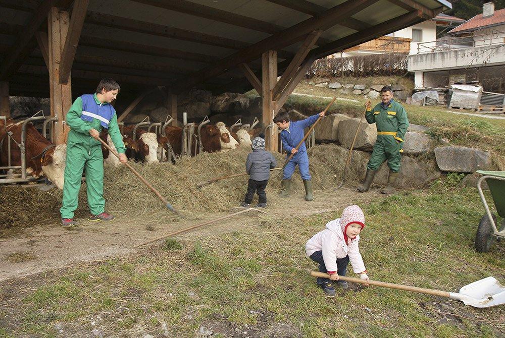 Esperienze in fattoria per grandi e per piccini