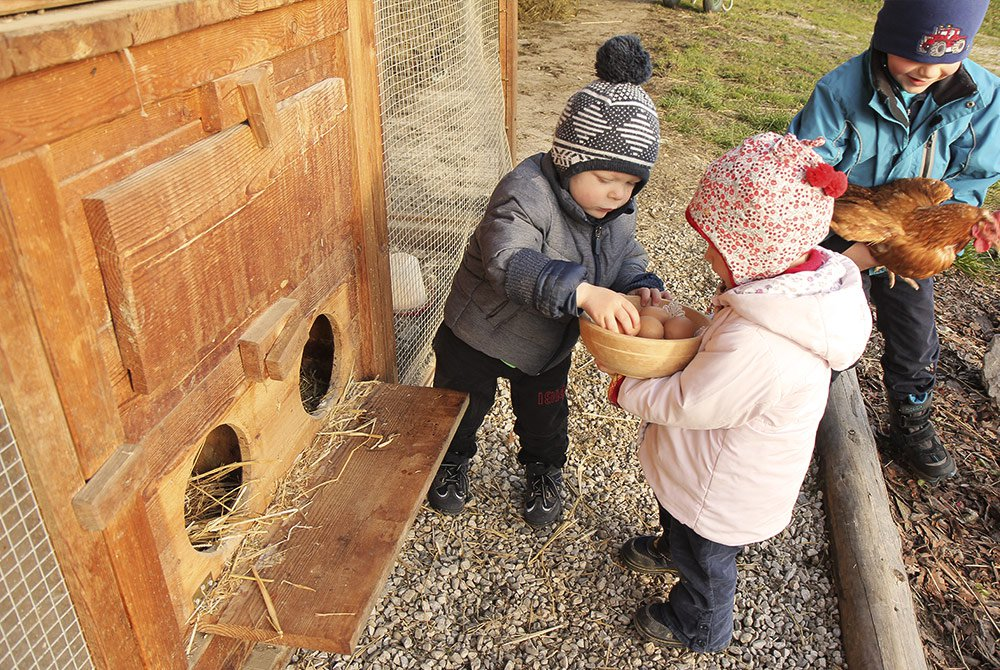 Kinder holen Eier aus den Nestern