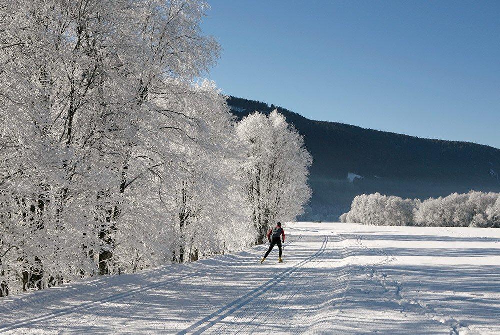 Ob-Skipisten-oder-Winterwanderungen--raus-in-die-schlafende-Natur!